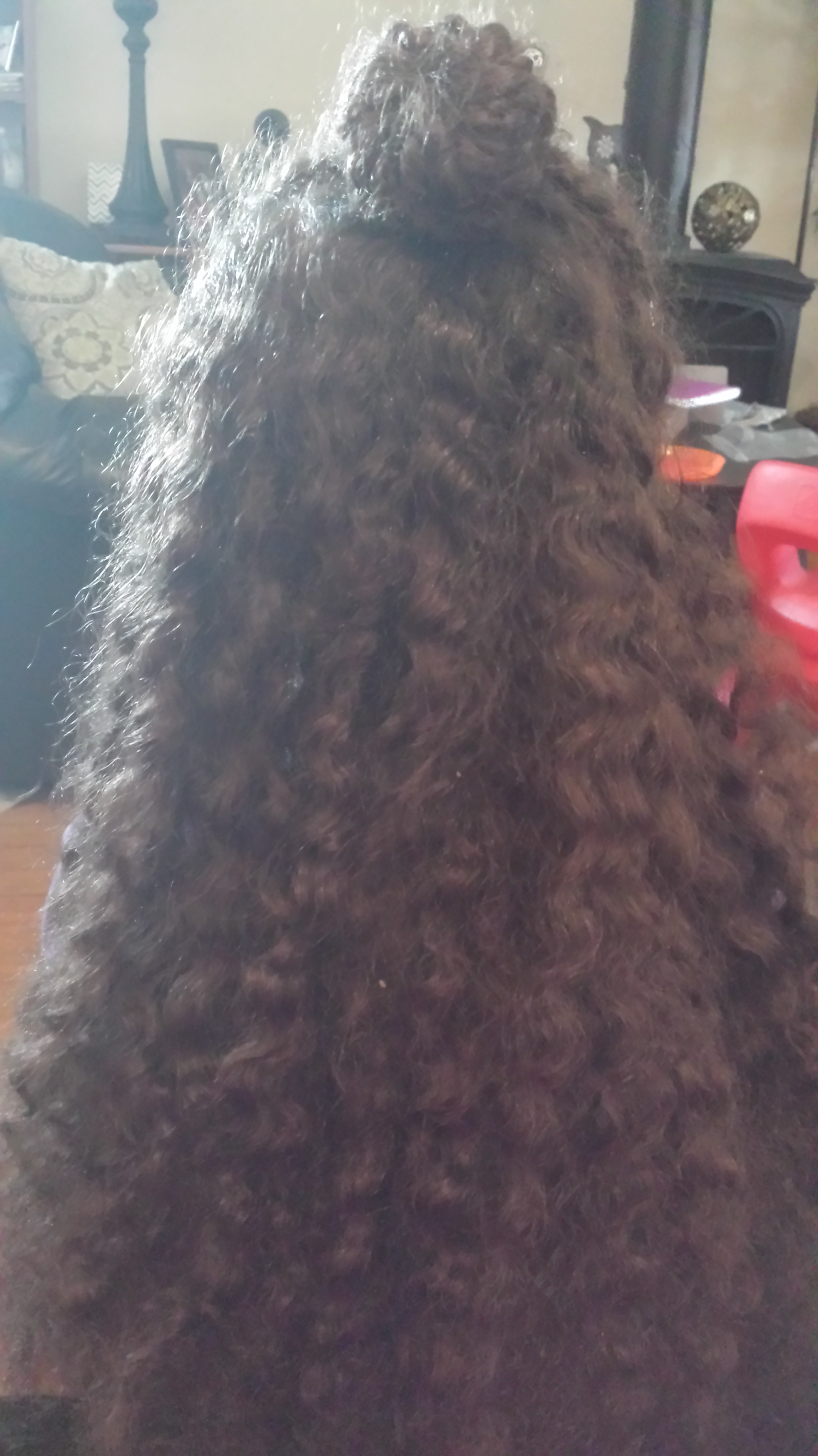 How to Detangle Curly Hair _ Divided Sections